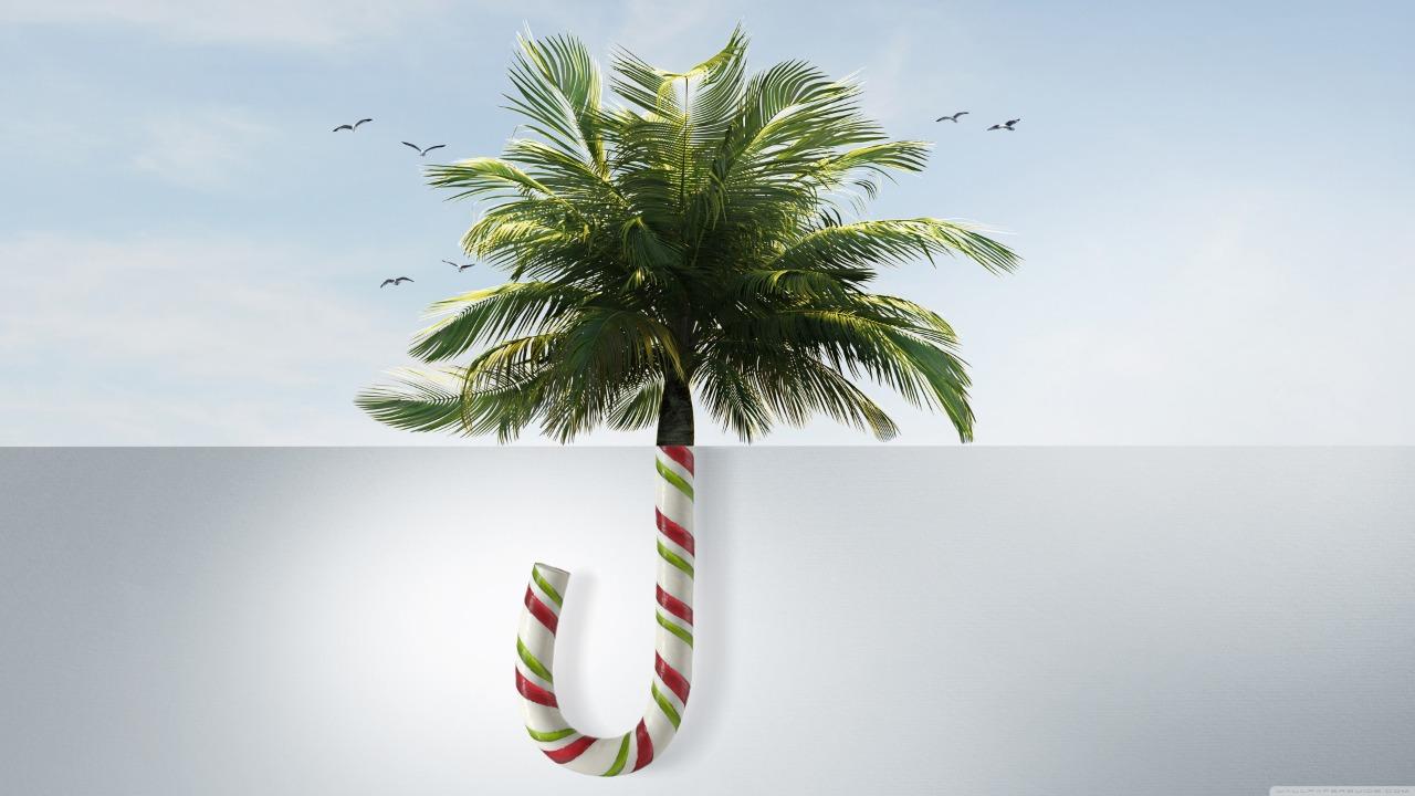 natal e férias