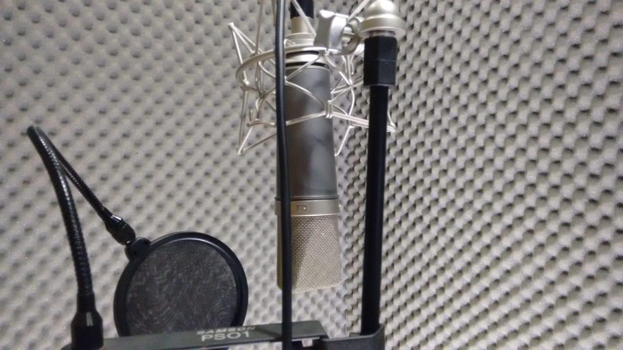 Vox microfone