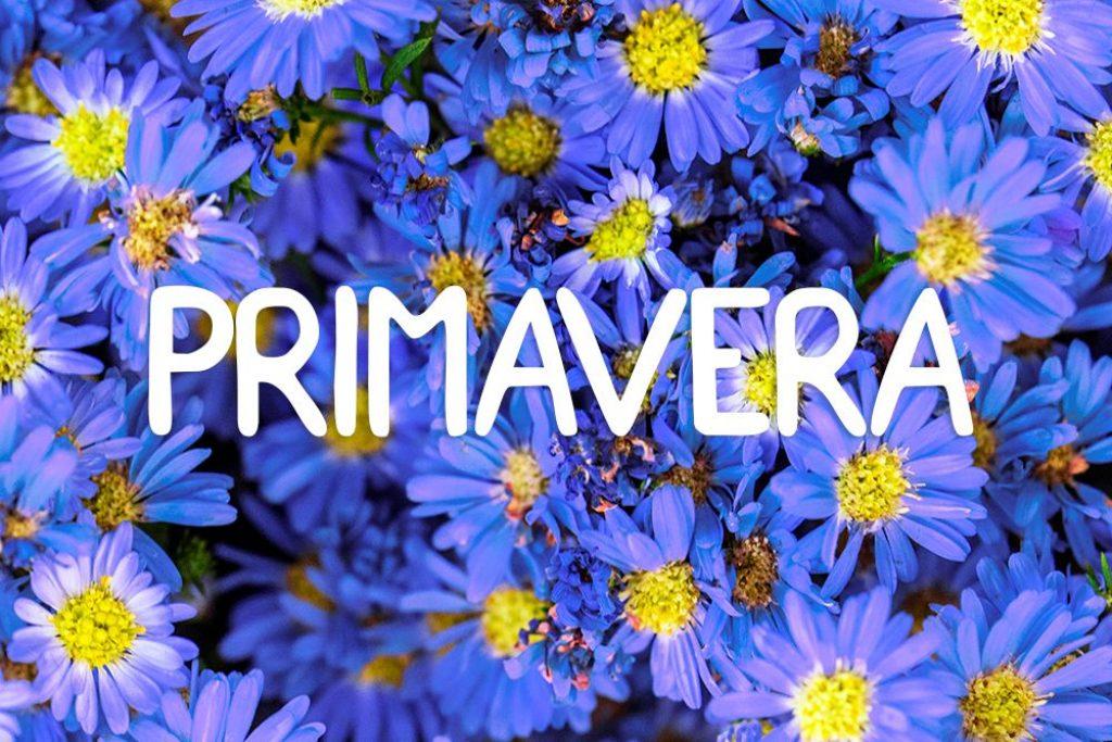 Primavera-1024x683